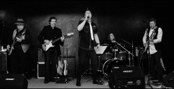 60s Band, 70s Band, 80s Band, Function Band, Rock Band, Rock n Roll Band #2482 Image