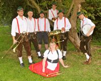Oompah Band #3663 Image