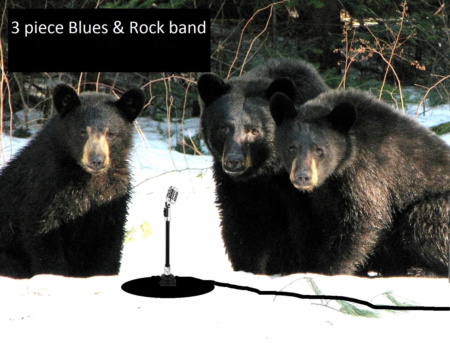 Blues Band #3991 Image