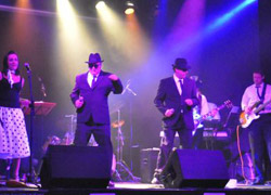 #1462 - Tribute Act, Blues Band, Soul Band, Tribute Band