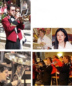 Brass Band, Classical Performer, Jazz Band #531 Image
